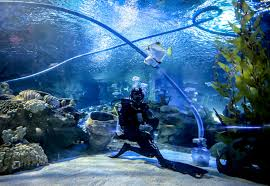 Langkawi Underwater World Tickets